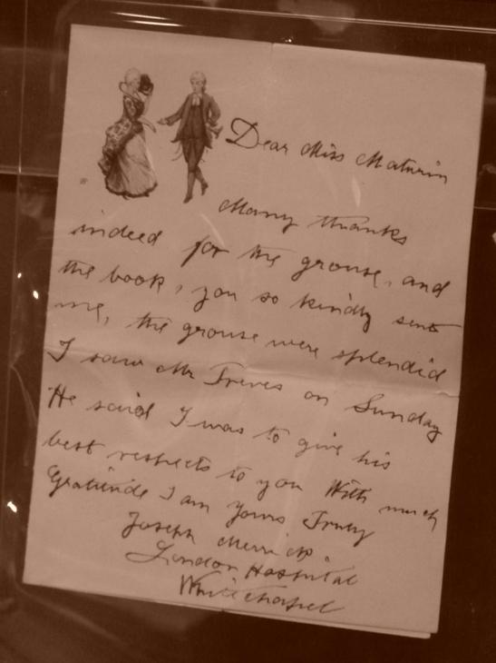 The elephant man essay