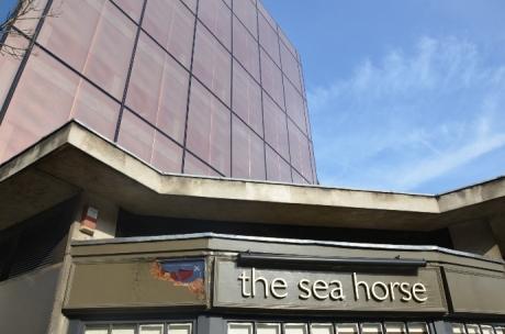Sea Horse (3)